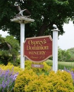 Osprey's Dominion Vineyards-5