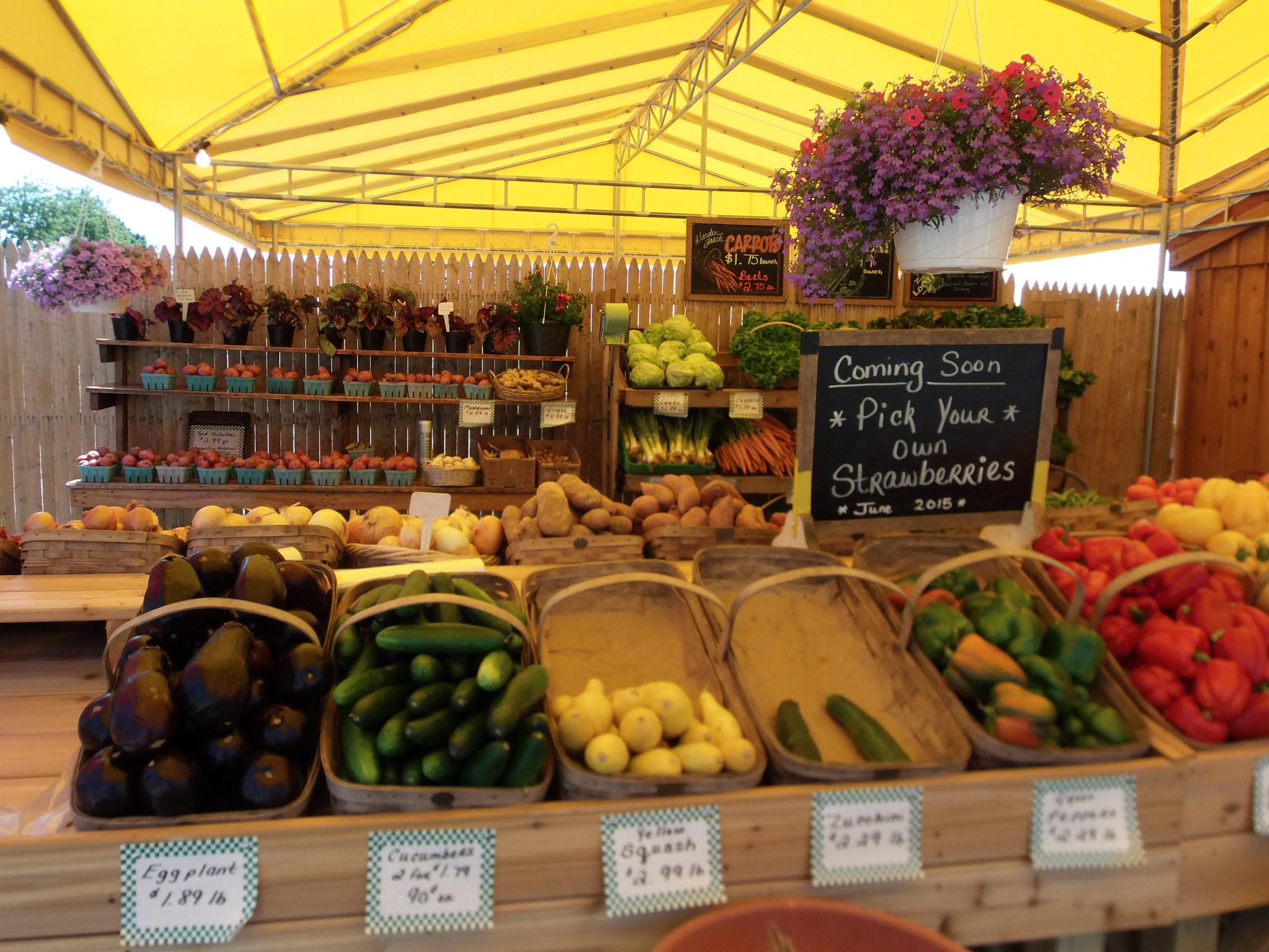 Bayview Farms & Market-8