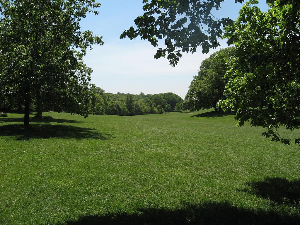 Prospect Park-8