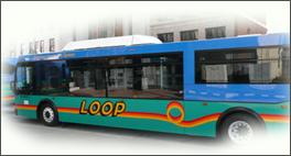 duquesne loop bus transportation program essay