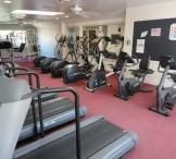 NoFo Wellness Center-4