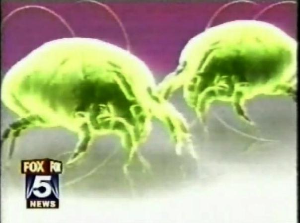Liberty Pest Control-5