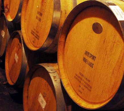 Jamesport Vineyards-11