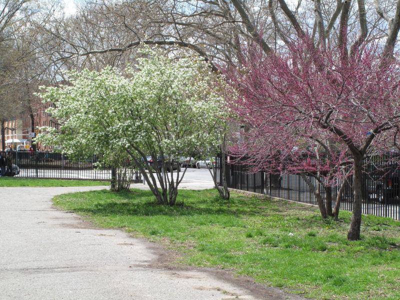 McCarren Park-9