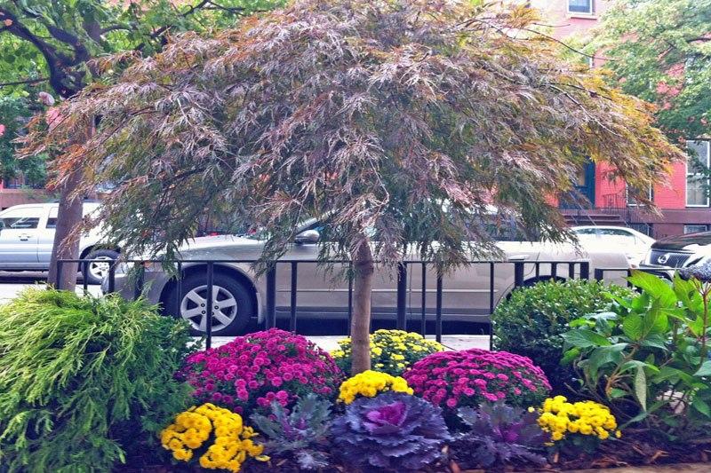 Amber Freda Home U0026 Garden Design 4