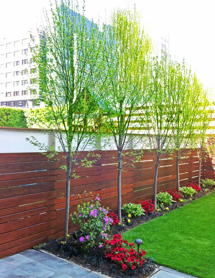 Amber Freda Home U0026 Garden Design 10