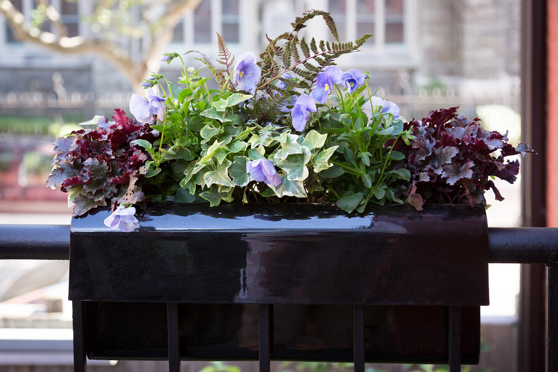 Bluestar Gardens-4