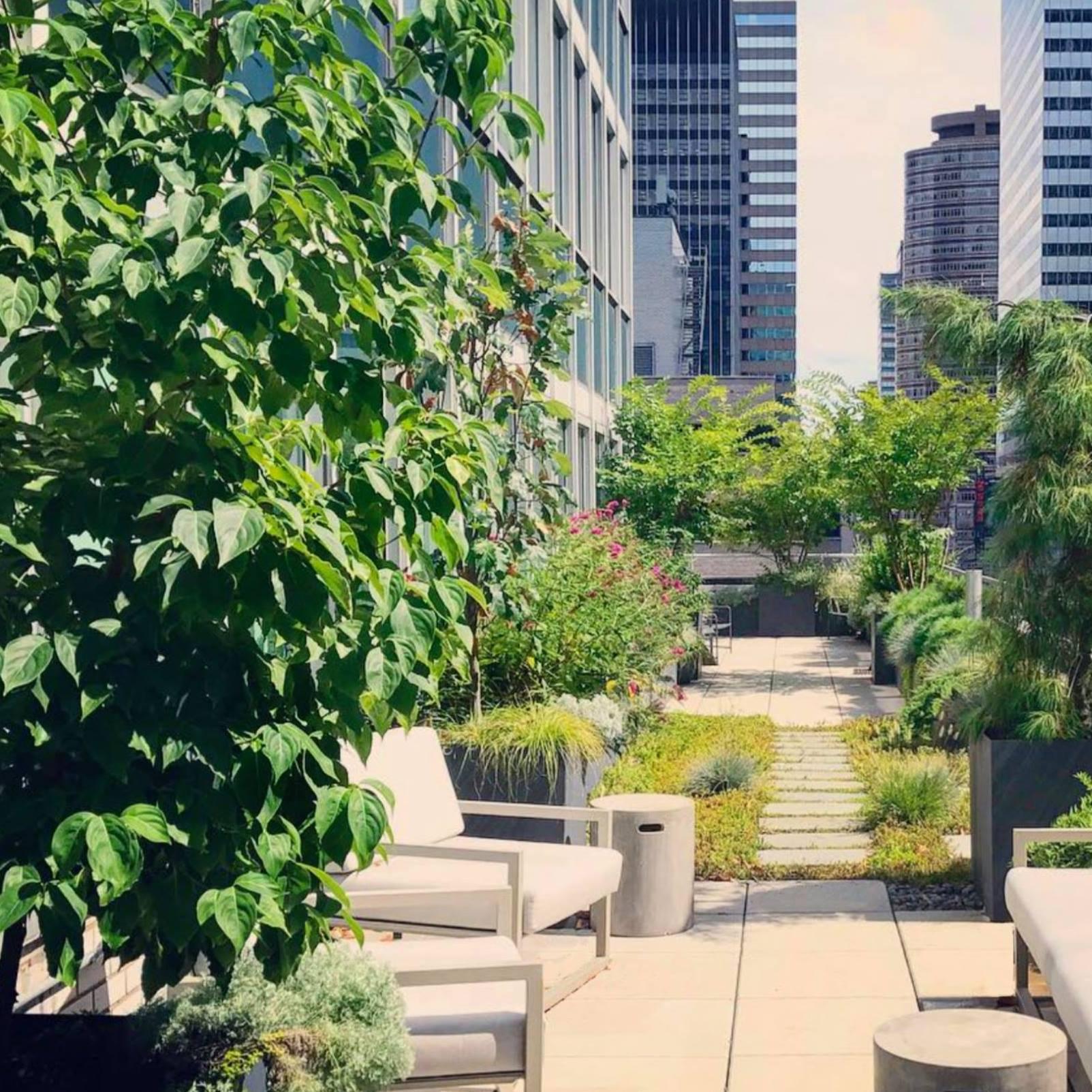 Twelve Gardens Ltd.-1