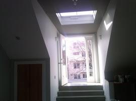 Bonete Renovation-3